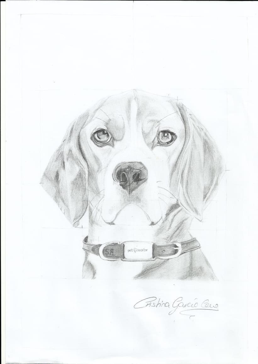 Dibujo / Drawing || Ilustración / Illustration 6