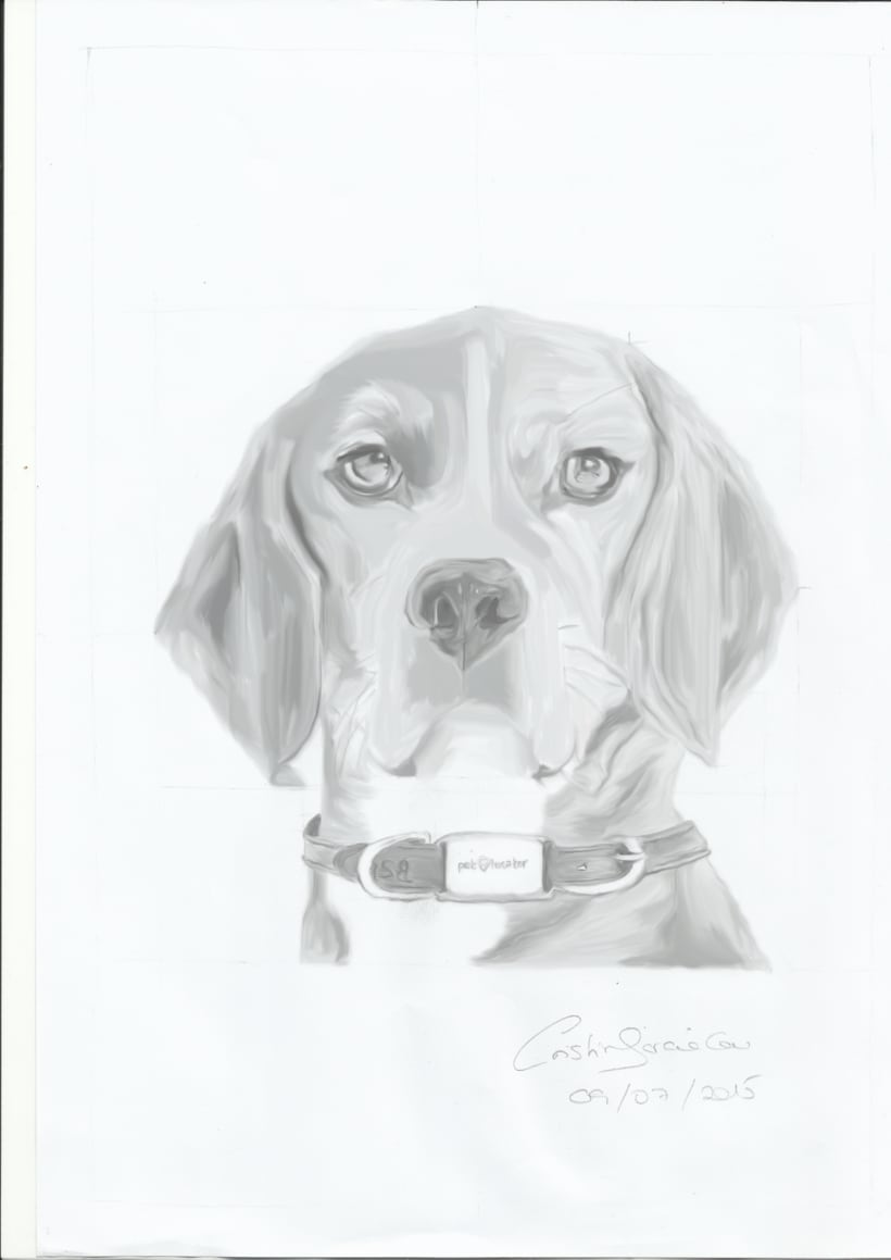 Dibujo / Drawing || Ilustración / Illustration 7