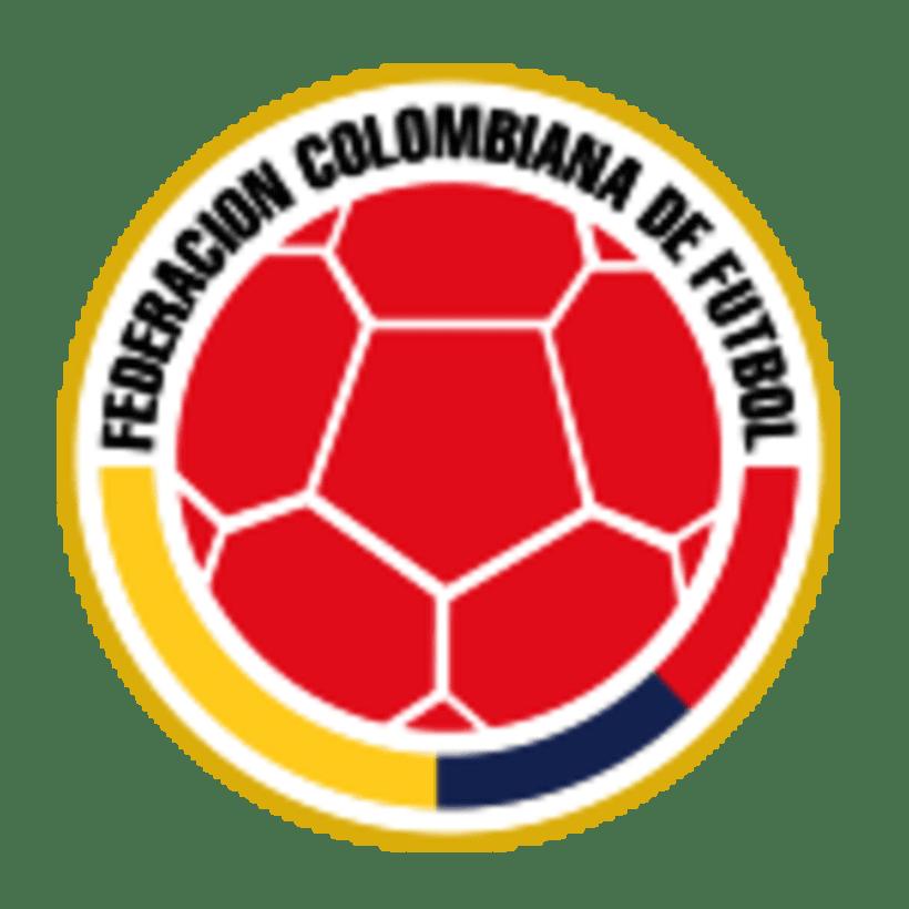 Cracks Copa América 12