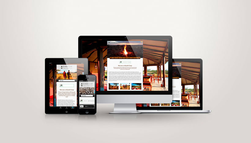 Diseño Web / Wordpress/ Css / Responsive 0