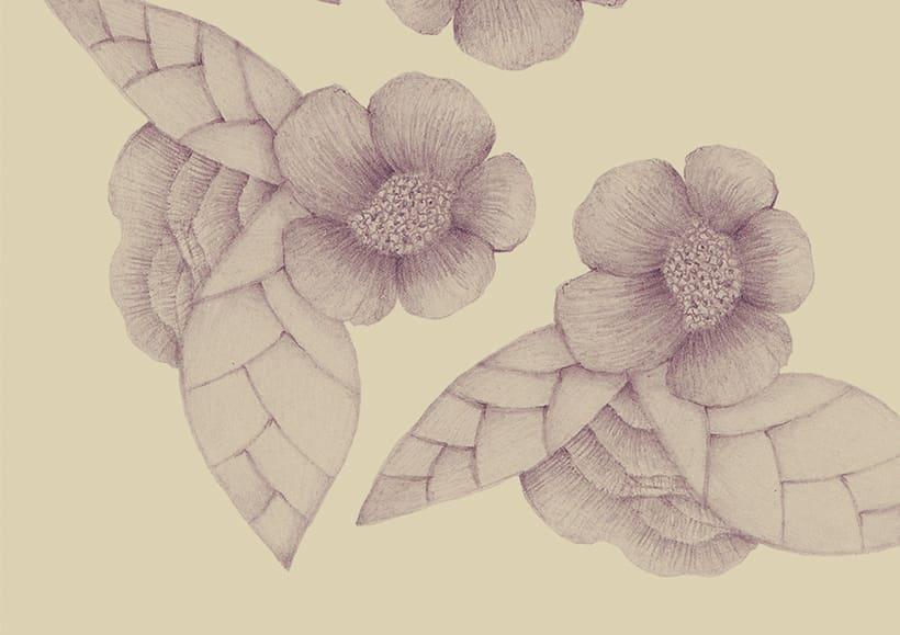 Pattern/ TORTUGAS 1
