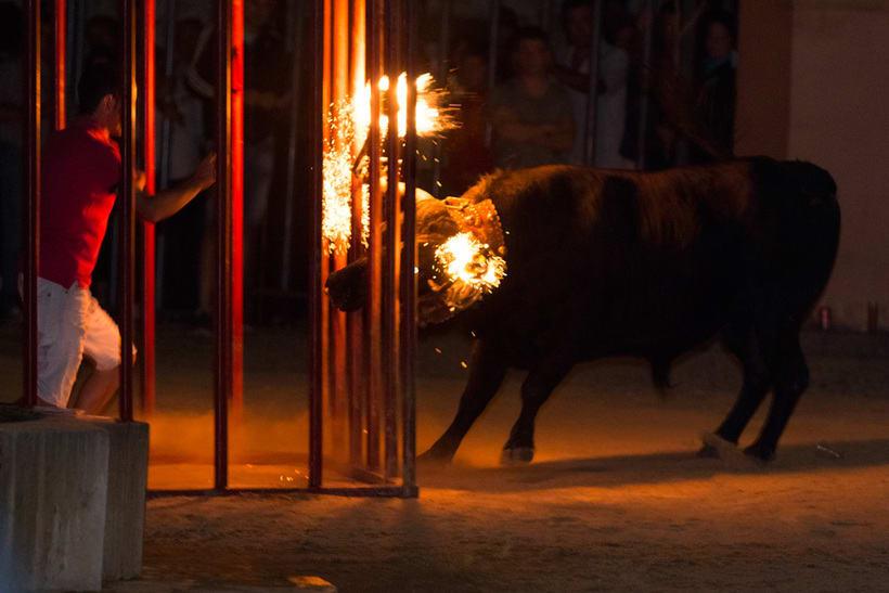 Fiestas y tradiciones 14