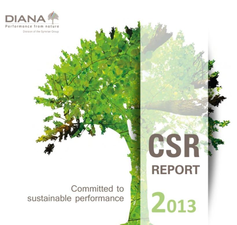 Catálogo RSE 2013 (Responsabilidad Social Empresarial) -1
