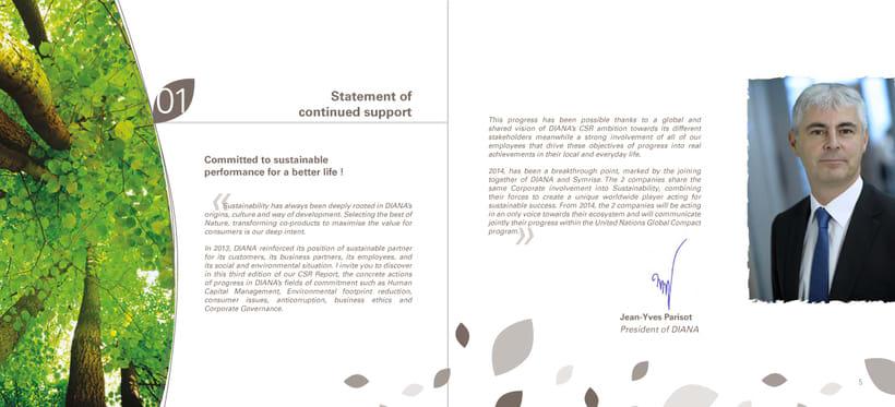 Catálogo RSE 2013 (Responsabilidad Social Empresarial) 1