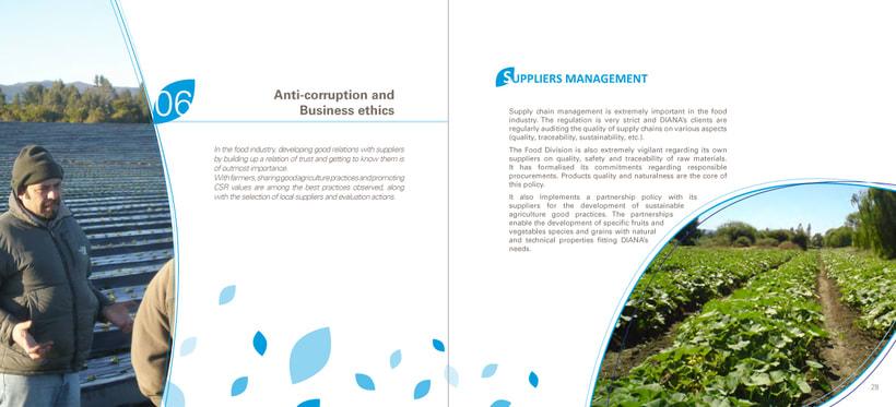 Catálogo RSE 2013 (Responsabilidad Social Empresarial) 13