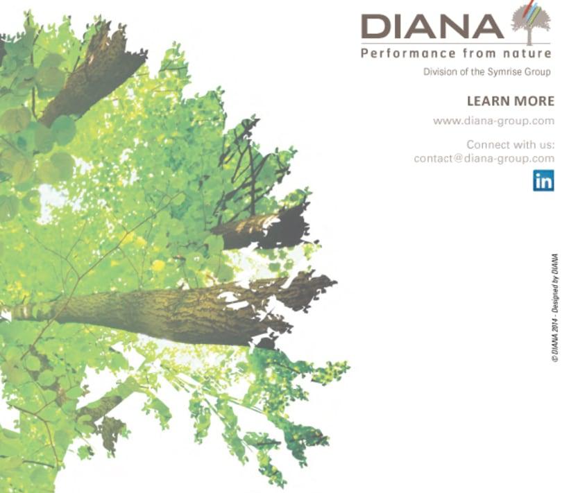 Catálogo RSE 2013 (Responsabilidad Social Empresarial) 18