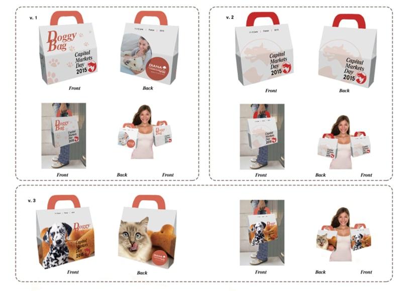 Packaging bolsa -1