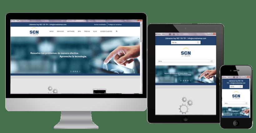 SCN Web 0