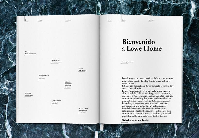Lowe Home - Proyecto Personal Editorial 5
