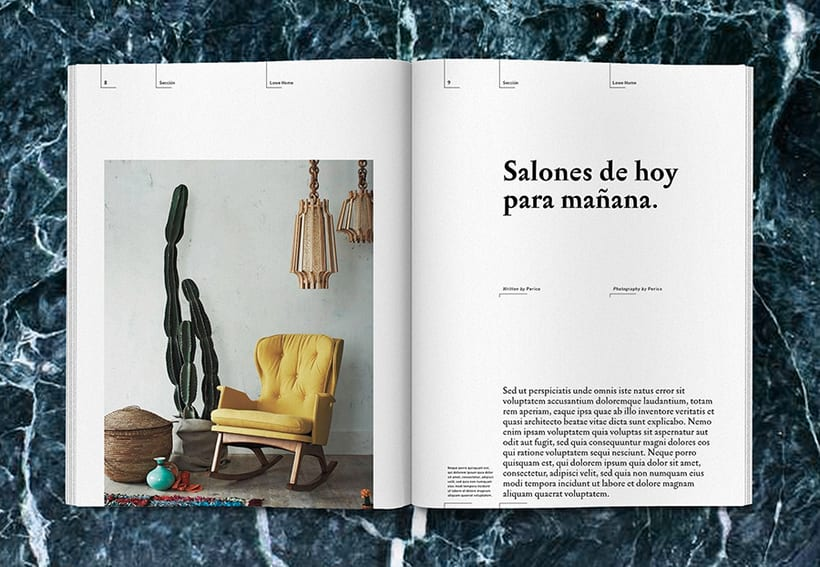 Lowe Home - Proyecto Personal Editorial 7