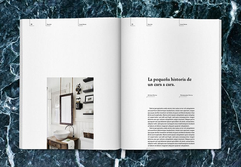 Lowe Home - Proyecto Personal Editorial 13