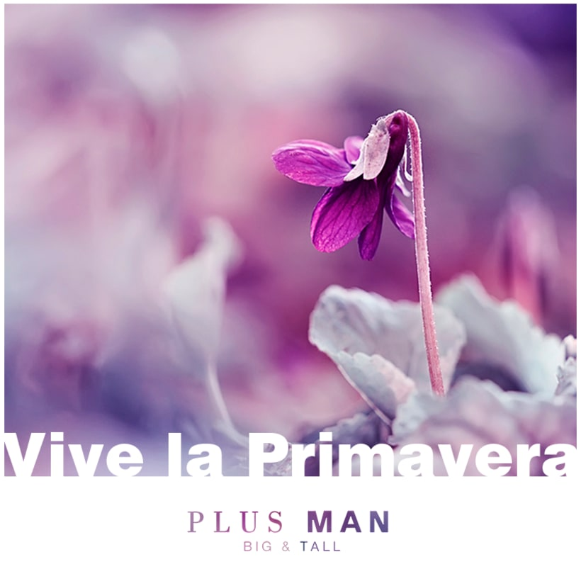 PLUS MAN 8