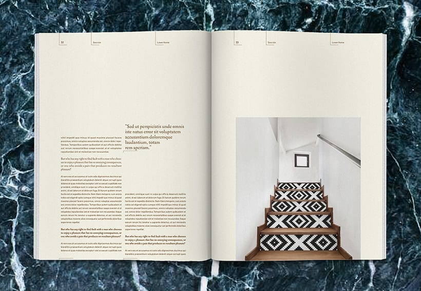 Lowe Home - Proyecto Personal Editorial 17