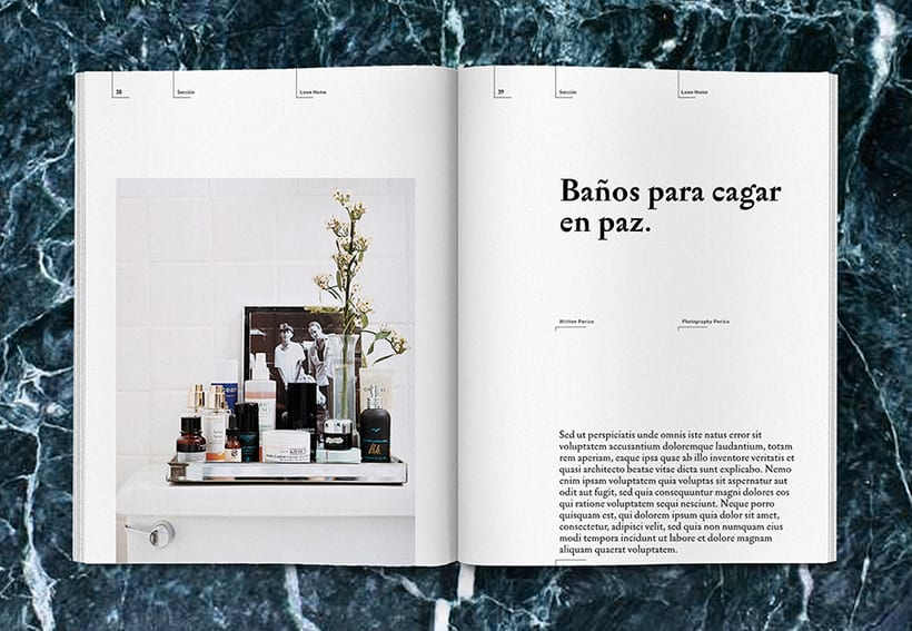 Lowe Home - Proyecto Personal Editorial 19