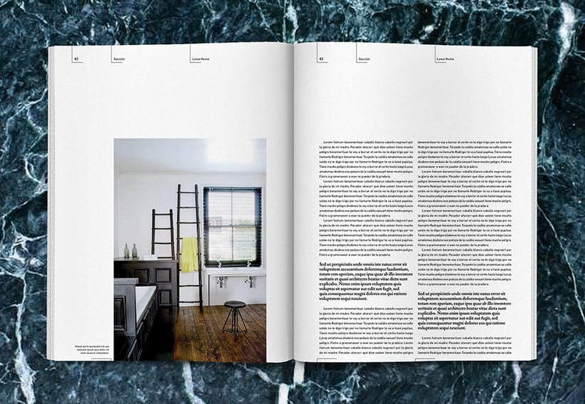 Lowe Home - Proyecto Personal Editorial 20