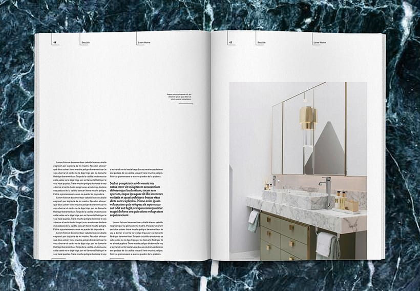 Lowe Home - Proyecto Personal Editorial 21