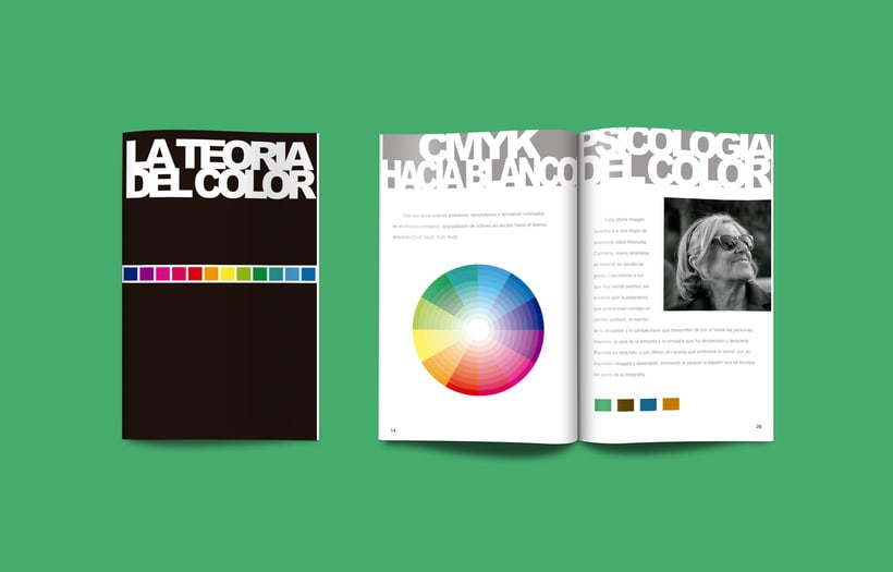 Revista La Teoría del Color 0