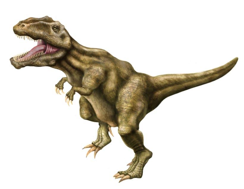 Giganotosaurus carolini 7