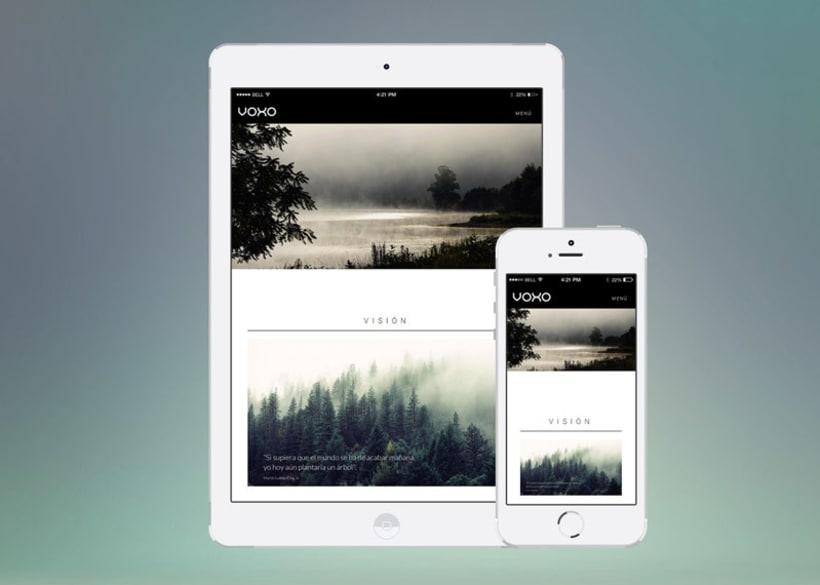 Voxo Web Site 2
