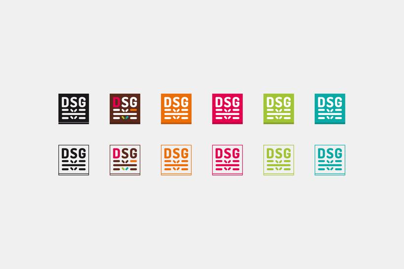 DSG 6
