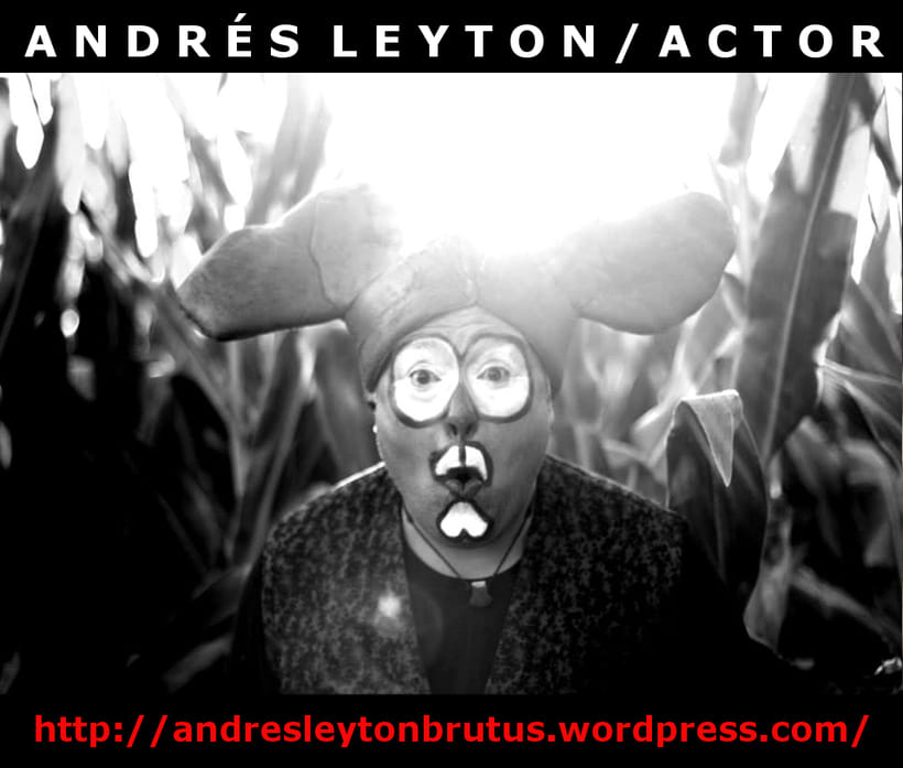 Andrés Leyton / Actor / Gráfica 10