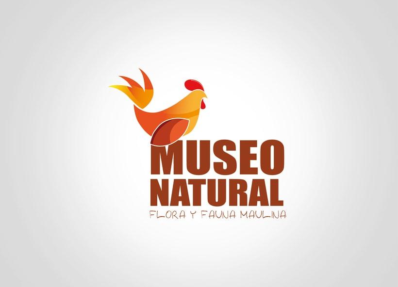 Desarrollo de Identidad Corporativa - Museo Natural  1