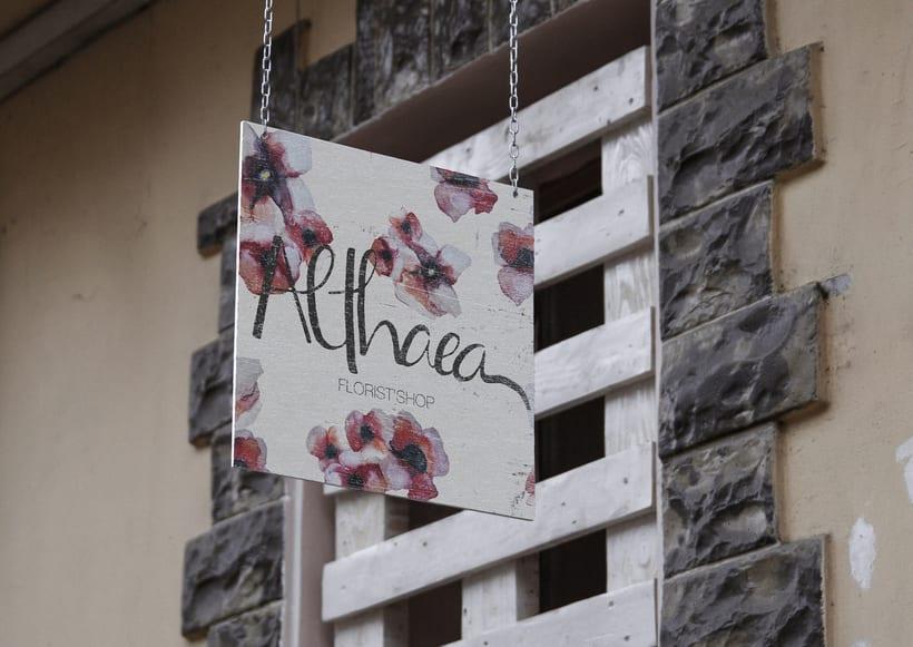 Althaea 4