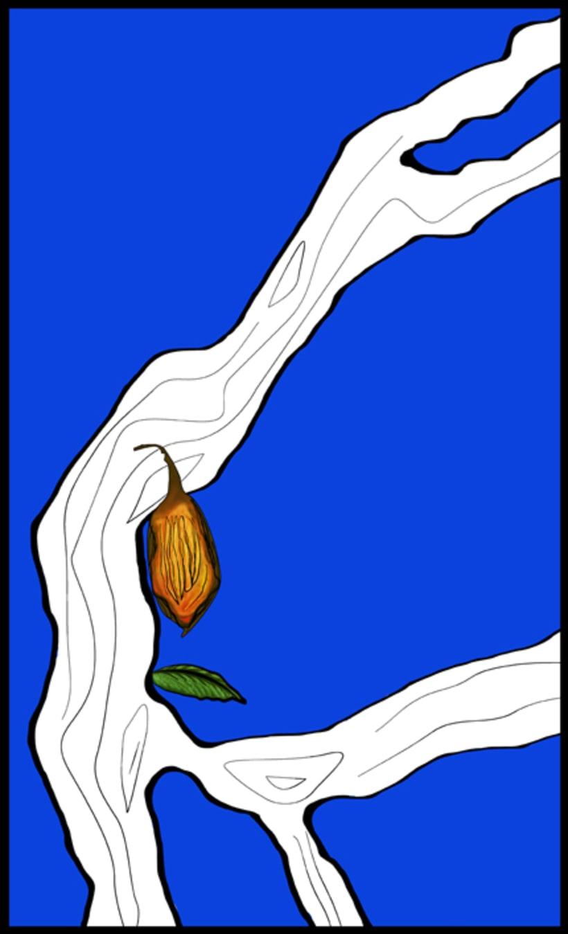 Cacao /// #Ilustración #Artwork 0