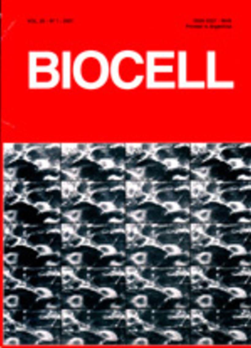 Editora en Jefe Revista BIOCELL -1