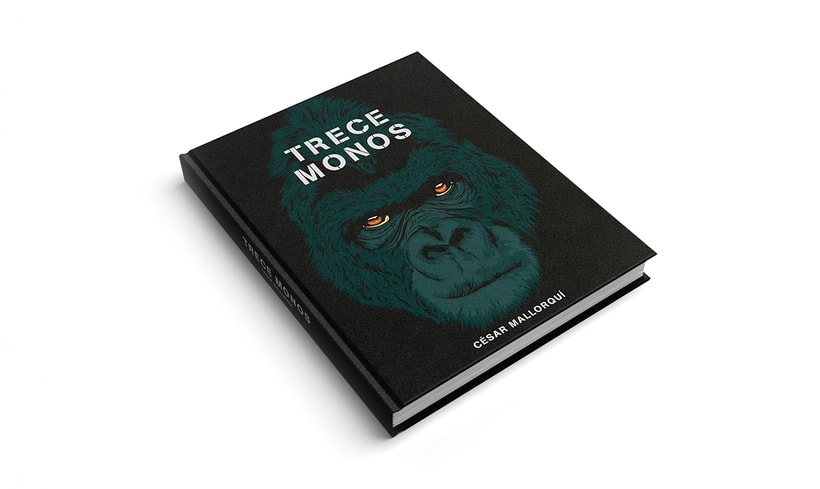 "Book cover ""Trece Monos"" 1"