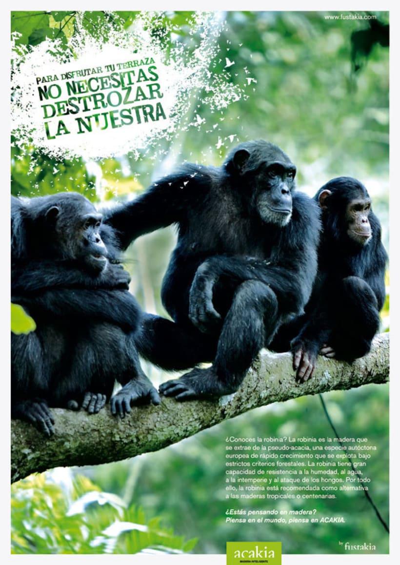 Fustakia: campaña gráfica para marca de parquet ecológico 2