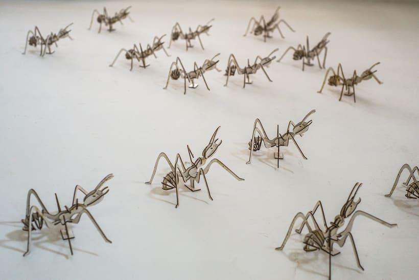 Hormigas AttA 0