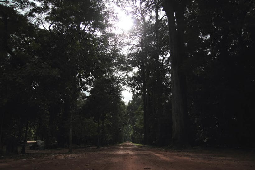 Angkor Wat, Siem Riep - Campoya 9