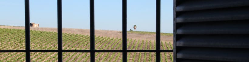 Callejuela - Diseño de etiqueta para vino 0