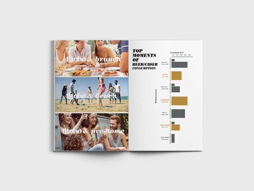 Brochure 01 1