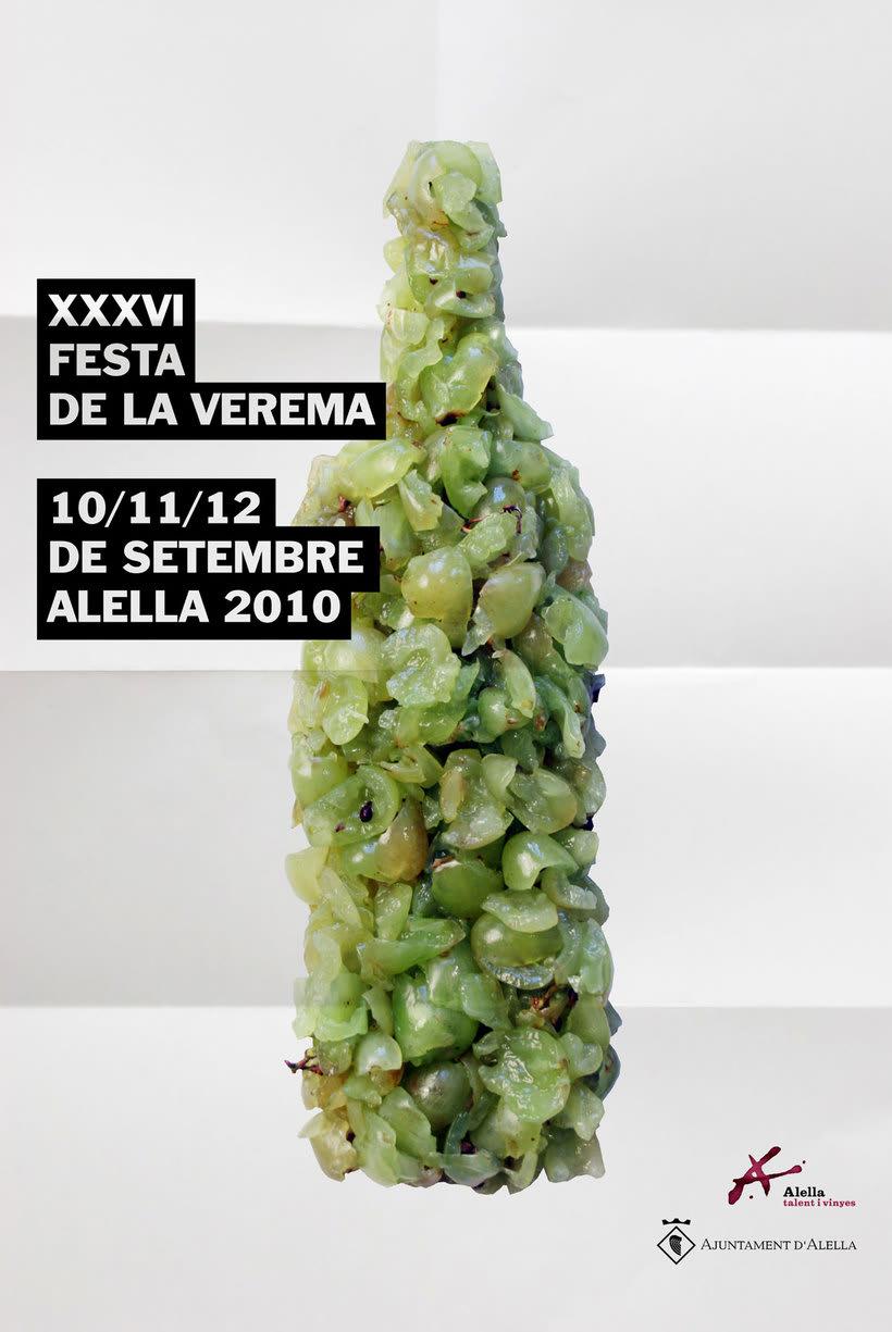 Verema 2010 -1