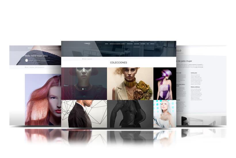 Web DeSancho estilistas. 2