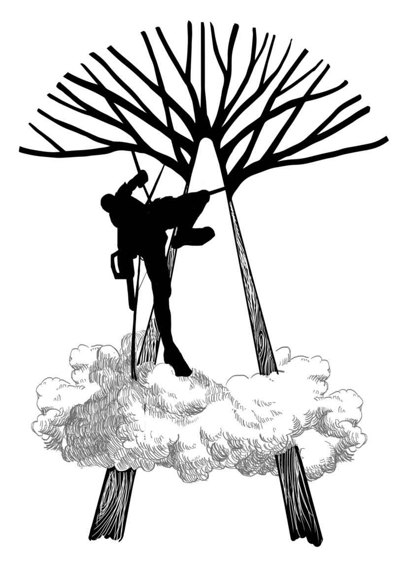 Arboristas -1