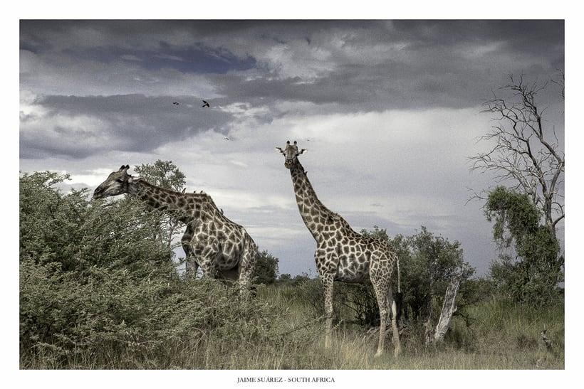 Botswana - Paisajes y retratos 10