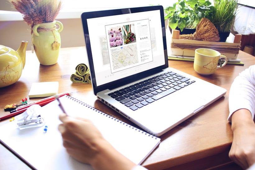 Diseño de marca y página web 3