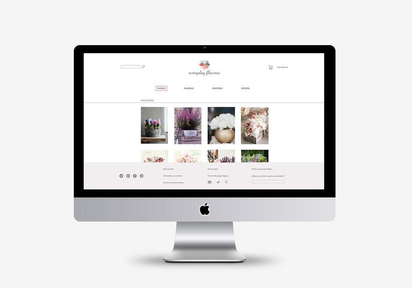 Diseño de marca y página web 2