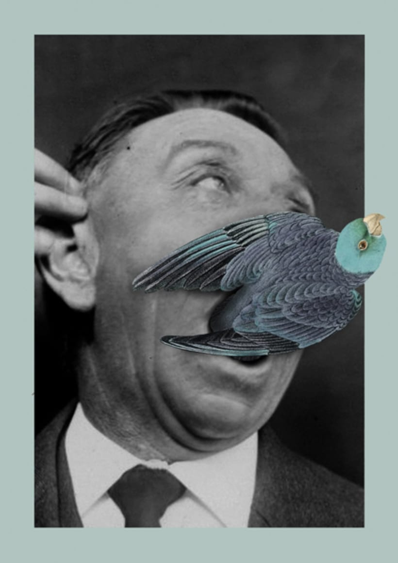 Birds 0