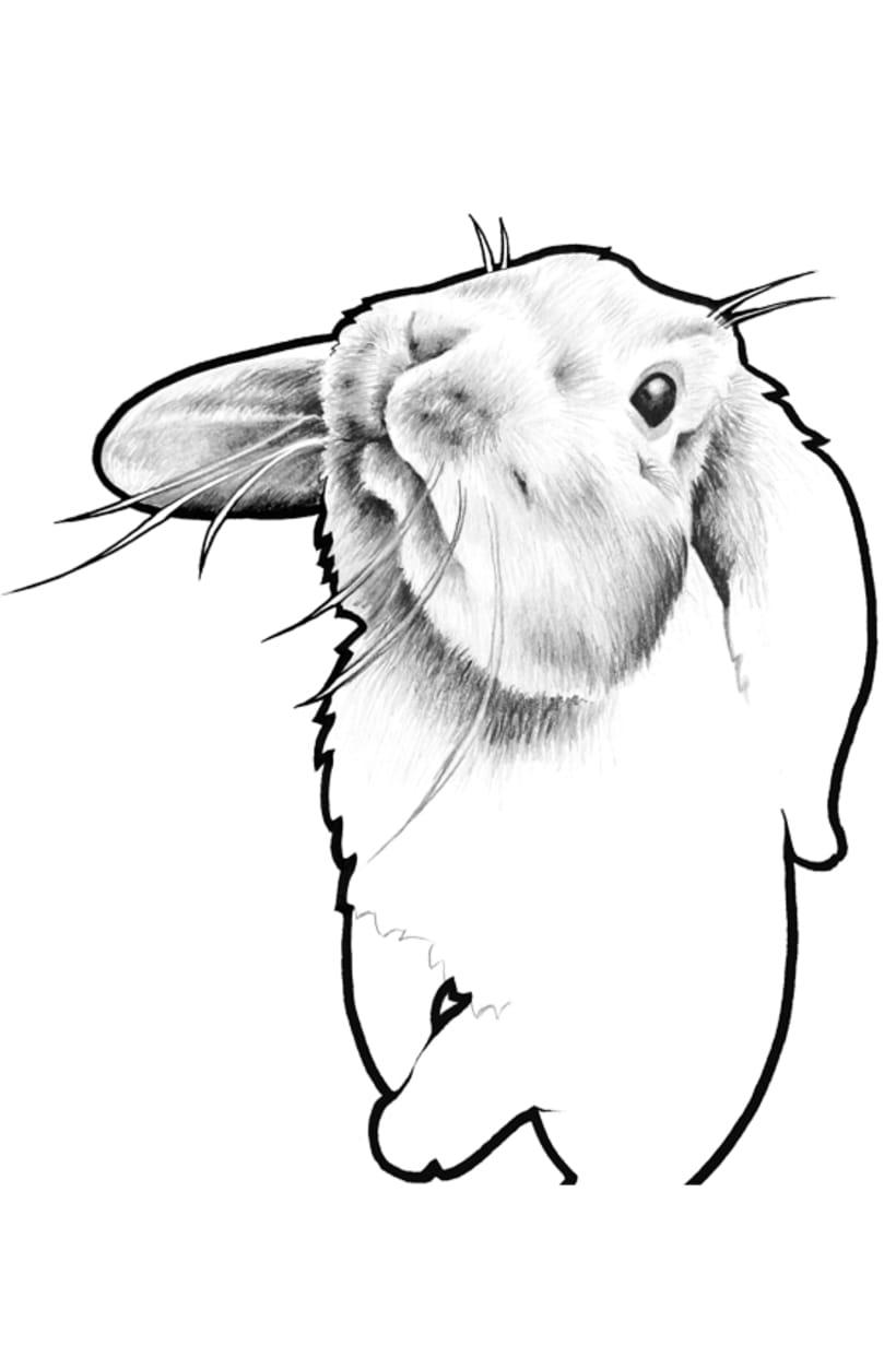 Taza conejo -1
