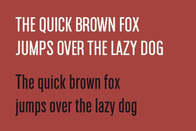 Americana tipografía 4