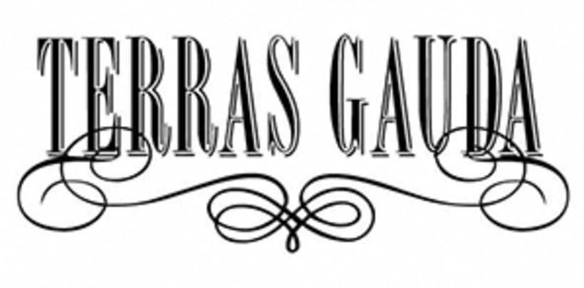 Cartel Terras Gauda 2015. Viñas y Líneas 0