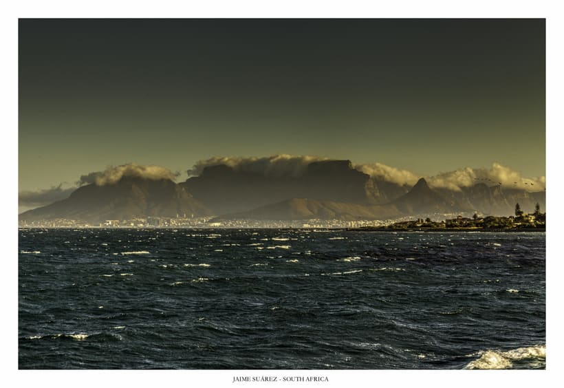 ROBBEN ISLAND  15