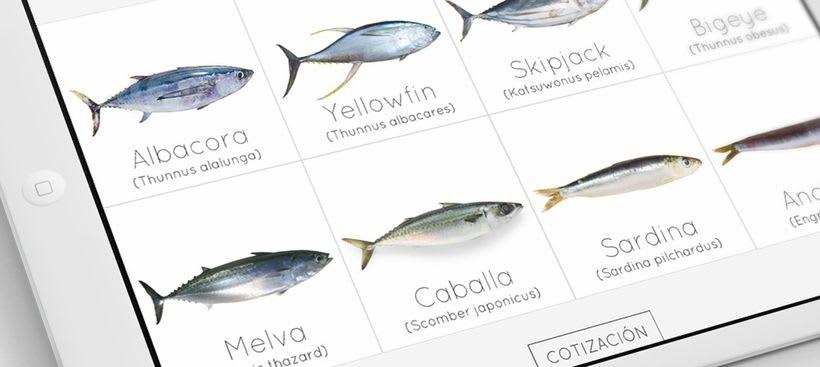 Fish&Company 1