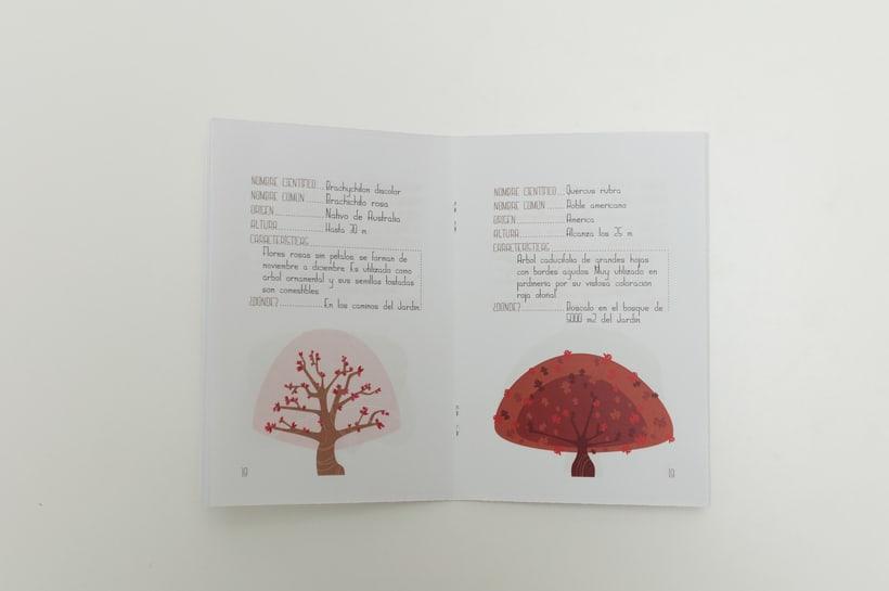 """Prototipo pack didáctico """"Jardín Botánico Valencia"""", colaboración con Mariana Marlo: packaging, tipografías y logotipo. Fotografías: Luis Chiarri 1"""