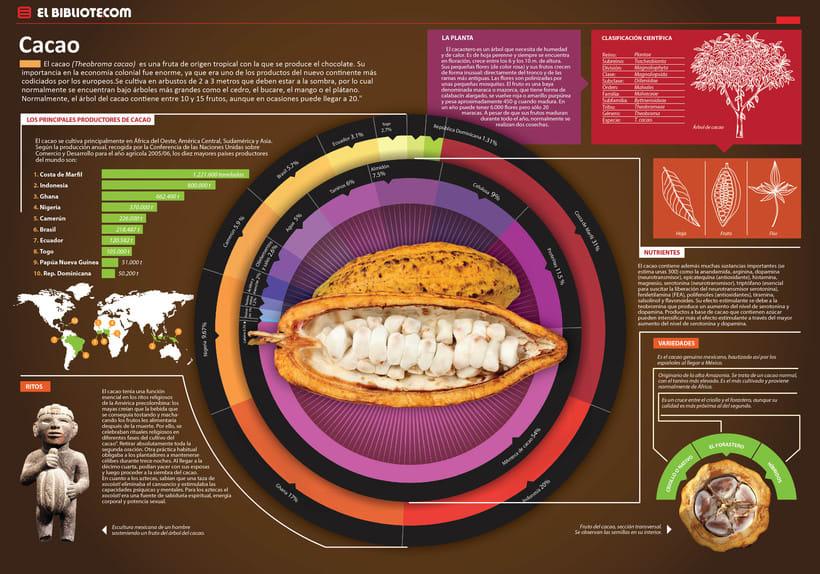 Infografias- Diseño e ilustración -1