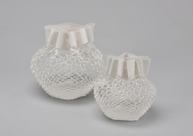 Biodegradable Nets 2